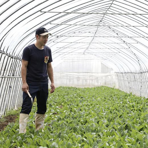 地域農業連携事業